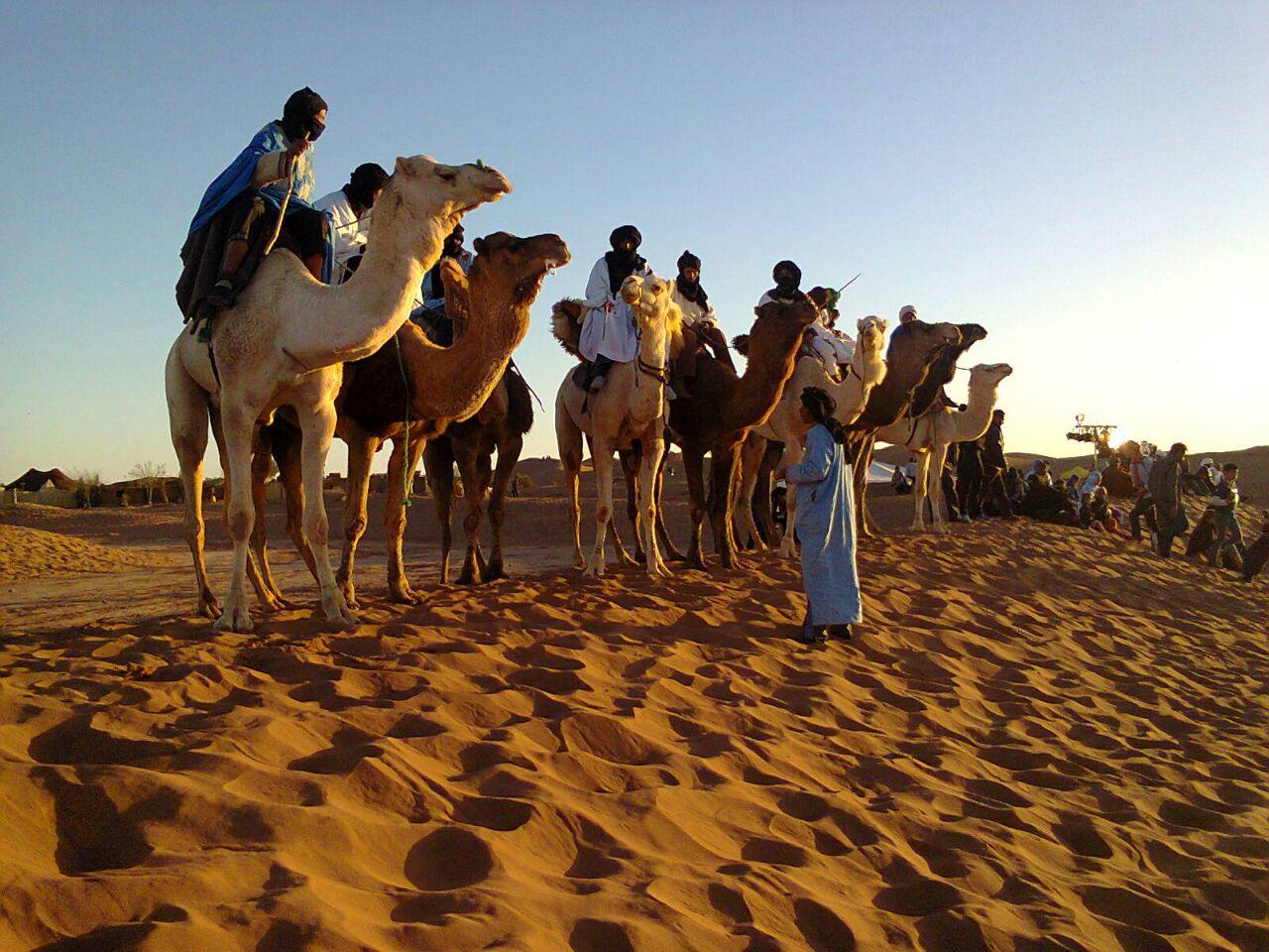 Day Camel Trek