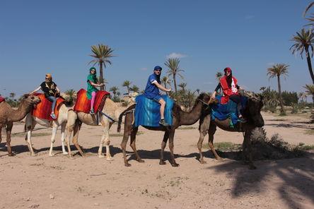 Day Camel Treks Marrakesh
