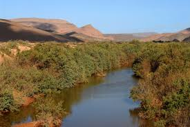 Draa Valley Camel Trek