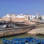 Essaouira Camel Treks