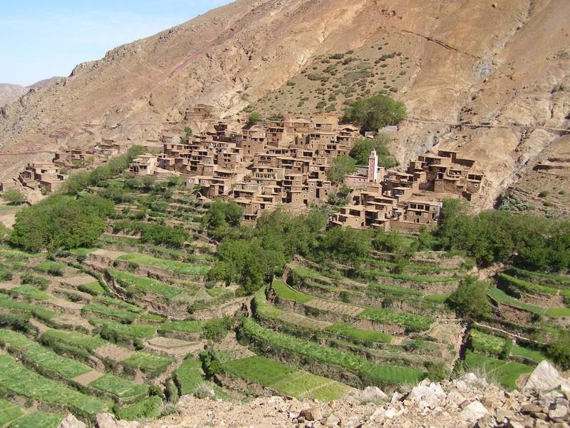 Family Trek in Morocco