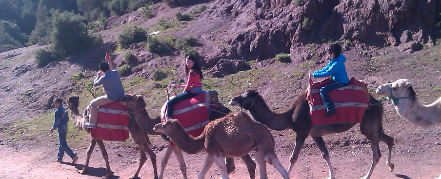 Ride Camels and Hike in the Atlas Mountains
